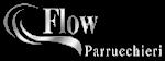 FlowParrucchieri